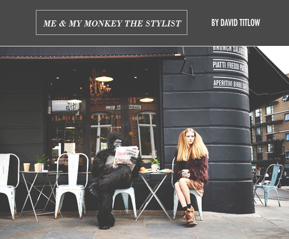 Monkey Stylist, by David Titlow